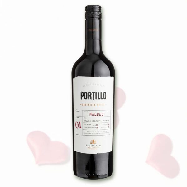 portillo malbec salentein